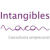 Intangibles Macan